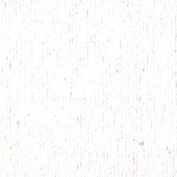 Titanová bílá