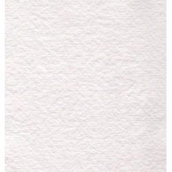 Bílý slídový