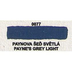Paynova šeď světlá 20ml