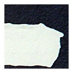 Běloba zinková