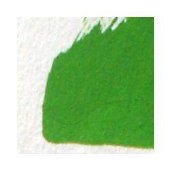 Kadmiová zeleň světlá