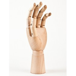 Model ruky